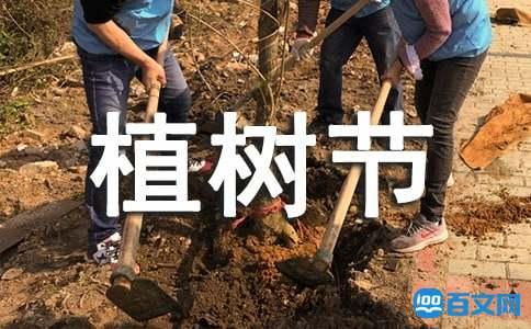 关于2020年植树节的活动策划方案